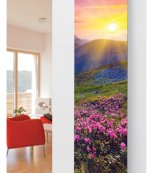 Glass Designer Radiator P28 Summer Meadow Image