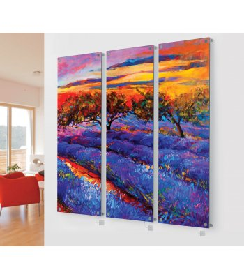 Panio Crystal Glass Picture Designer Radiator M9 Colourful Meadow Triple  Image