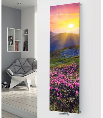 Panio Crystal Glass Picture Designer Radiator P28 Summer Meadow Image