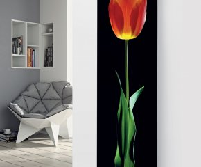 Panio Crystal Glass Picture Designer Radiator P67 Red Tulip on Black Image