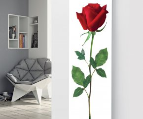Panio Crystal Glass Picture Designer Radiator P73 Red Rose Image