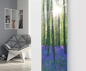 Panio Crystal Picture Glass Designer Radiator P198 BLUEBELL FOREST IMAGE