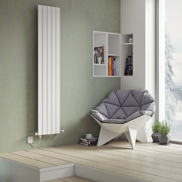 Dual Fuel Designer Radiators